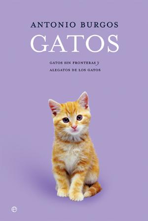 Gatos sin fronteras\